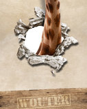 Poster (zelfklevend) giraf jungle detail